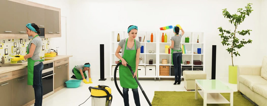 Ev işlerine yardımcı bayan kimdir