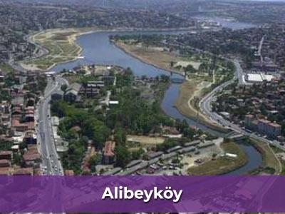Ev işlerine yardımcı bayan Alibeyköy