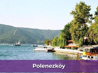 Ev işlerine yardımcı bayan Polonezköy