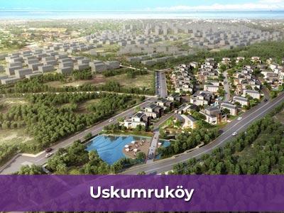 Ev işlerine yardımcı bayan Uskumruköy